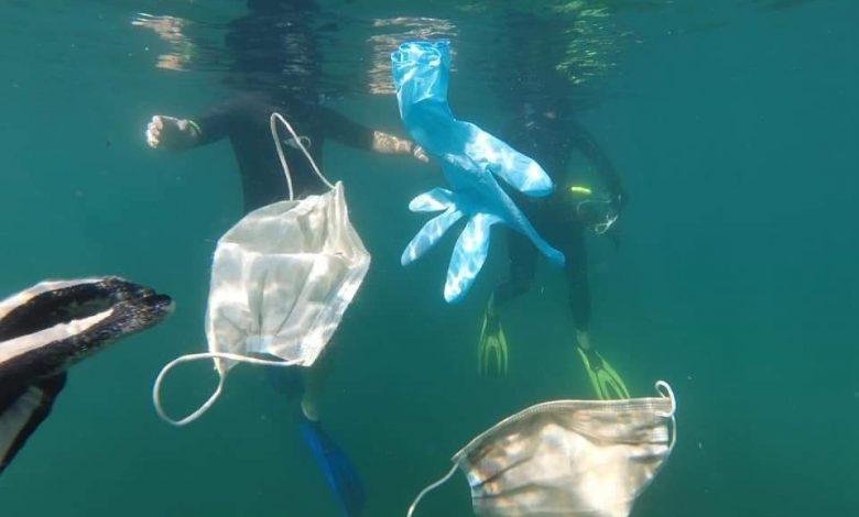 Home - Ocean Innovators | UN Sustainable Goals - Ocean Solutions